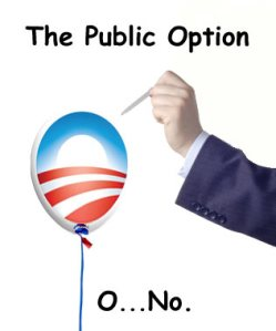public-option-no